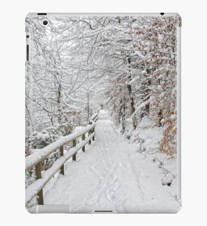 The winter lane iPad Case/Skin