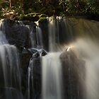 upper lilydale falls, northeast tasmania by tim buckley | bodhiimages