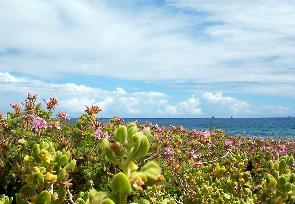 Leighton Beach Flowers - 07 10 12 by Robert Phillips