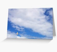 Turn In Flight Greeting Card