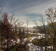 Sunrise Creek, Jordan Lake, NC by Denise Worden