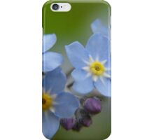 Close-up Forget Me Not - Blue Myosotis iPhone Case/Skin