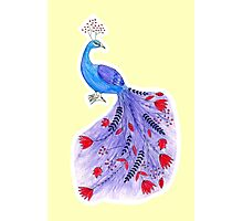 Magical Peacock Photographic Print