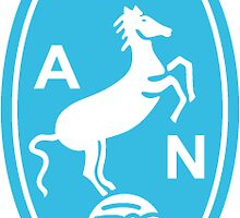 AC Napoli Logo by TigersFanatics