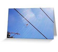 Beach Spider Four - 21 10 12 Greeting Card