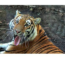 Stick your tongue  and say ahhhhh Photographic Print