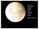 Blue moon/ Blou maan by Elizabeth Kendall