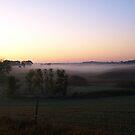Morning Mist by Scott Hendricks