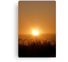 Barbed Sunrise Canvas Print