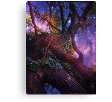 High in the Branches. Canvas Print