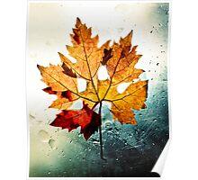 Gold Autumn Poster