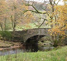 Pelter Bridge. by Lilian Marshall