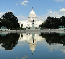 A Capitol Reflection by Barrie Woodward