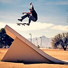 Ray Barbee - 360 Flip - Arizona - Photo Aaron Smith by Reggie Destin Photo Benefit Page