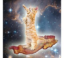 Majestic Cat Photographic Print