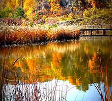 Brickworks Colours by PPPhotoArt