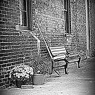 Brickworks Walkway by PPPhotoArt