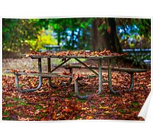 A Leafy Blanket For A Picnic Table - Flaming Geyser State Park  Poster