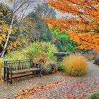 Autumn Tranquility by wiscbackroadz