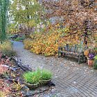 The Autumn Brick Trail by wiscbackroadz