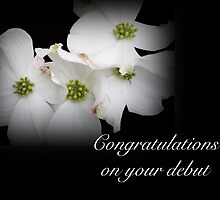 Congratulations on Your Debut - White Dogwood Blossoms by MotherNature