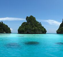 Raja Ampat & West Papua by Dr Andy Lewis