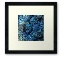 Blue Matrix Framed Print