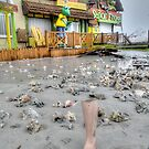 Hurricane Sandy has the sense of humour on Governor Woodes Rogers Walk in Nassau, The Bahamas by 242Digital