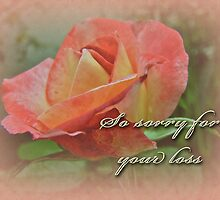 Sympathy Greeting Card - Peach Rose by MotherNature