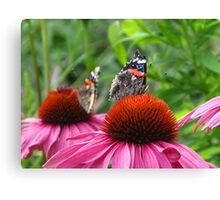 Inbetween takeoff Canvas Print
