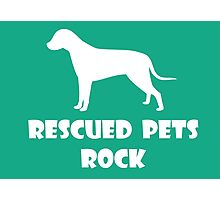 Rescued Pets Rock Photographic Print