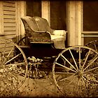 Carriage © by Dawn M. Becker