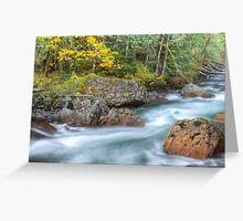 Sauk River Greeting Card