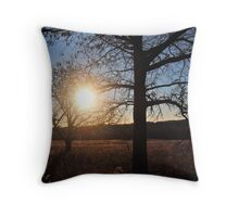 Shine On... Throw Pillow