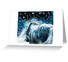 Highland Pony in Snow Greeting Card