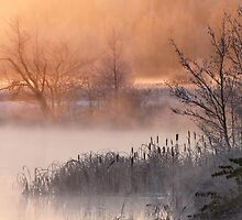 27.10.2012: Cold Morning at Loimijoki River by Petri Volanen