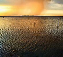 Golden Rain Cloud by Carolyn  Fletcher