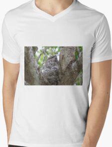 Mop Heads  Mens V-Neck T-Shirt