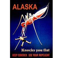 Alaska Knocks You Flat Mosquito Photographic Print