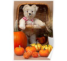 Misses Bear and Her Pumpkins Poster