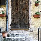 Door in Sassetta - Toscana - Italy by gluca