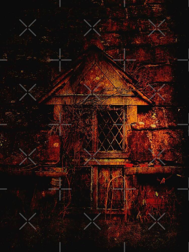 The Dark Window by Kim Slater