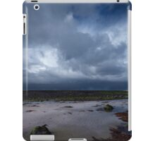 The Master of the Sky iPad Case/Skin