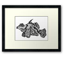 Mandarin Fish Drawing Framed Print