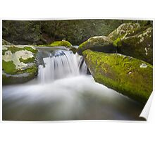 Roaring Fork Great Smoky Mountains National Park - The Simple Pleasures Poster
