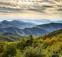 Blue Ridge Parkway Sunrise - Light Lines and Leaves by Dave Allen