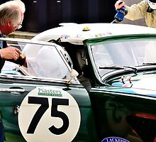 Austin Healey No 75 by Willie Jackson