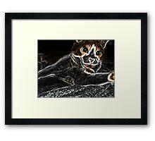 Holloween Scaredy Cat Framed Print