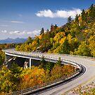 Blue Ridge Parkway Linn Cove Viaduct - North Carolina by Dave Allen