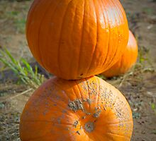 Pumpkin Stack by Euge  Sabo